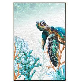 Framed Canvas - Green Turtle (Medium)