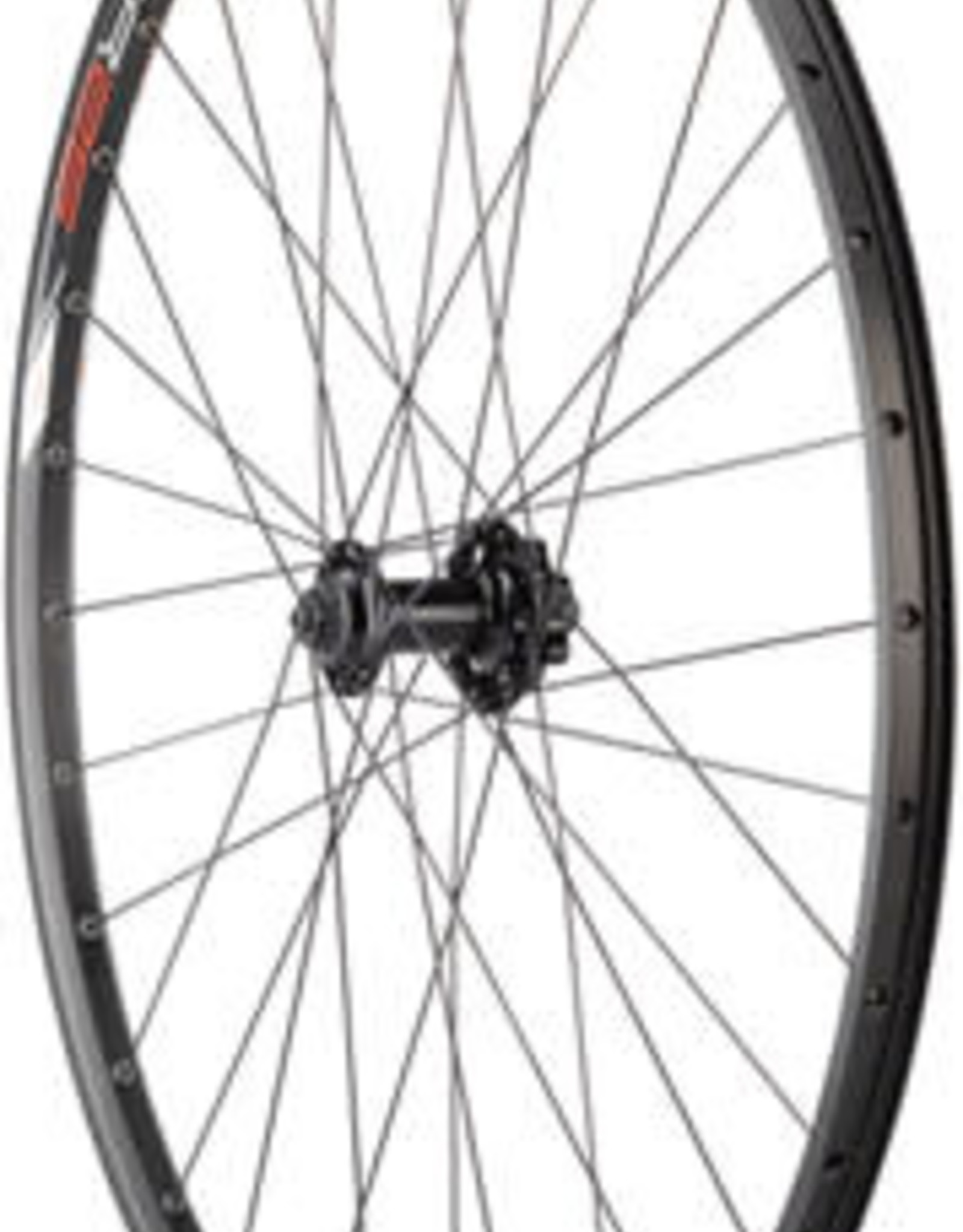 """Quality Wheels Value Double Wall Series Disc Front Wheel - 29"""", QR x 100mm, 6-Bolt, Black, Clincher"""