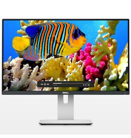 "Dell DELL UltraSharp 23.8"" LED HDMI/DisplayPort/mini-DisplayPort (16:9) 1920x1080 Height Adjust Stand VESA"