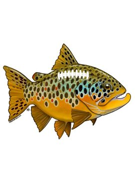 Remedy Provisions Football Brown Trout Decal