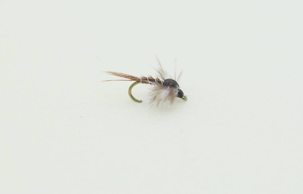 Ugly Bug Fly Shop Jackson's Macgruber Foam Back