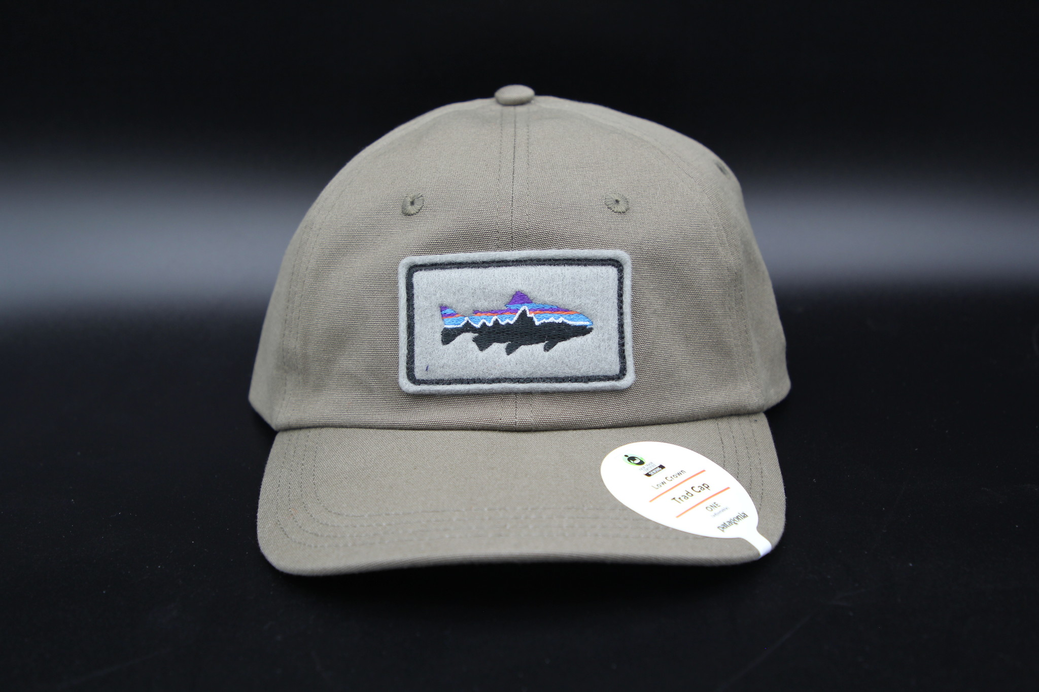 Patagonia PATAGONIA FITZ ROY TROUT PATCH TRAD CAP WITH UGLY BUG LOGO