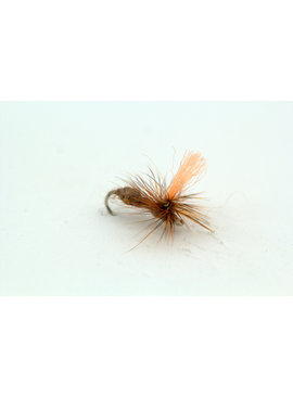 Ugly Bug Fly Shop Cinnamon Para Ant