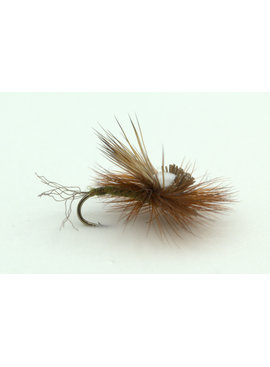 Ugly Bug Fly Shop Head light Caddis