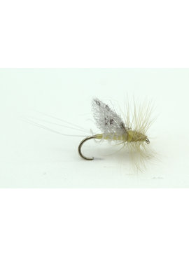 Ugly Bug Fly Shop SPOTTED WING PMD