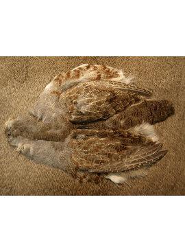 NATURE'S SPIRIT Premium Hungarian Partridge Skin