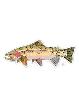CASEY UNDERWOOD Cutbow Trout Decal by Casey Underwood