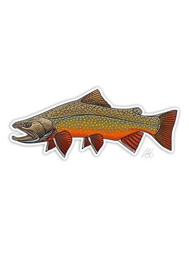 CASEY UNDERWOOD Brook Trout Decal by Casey Underwood