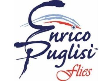 Enrico Puglisi