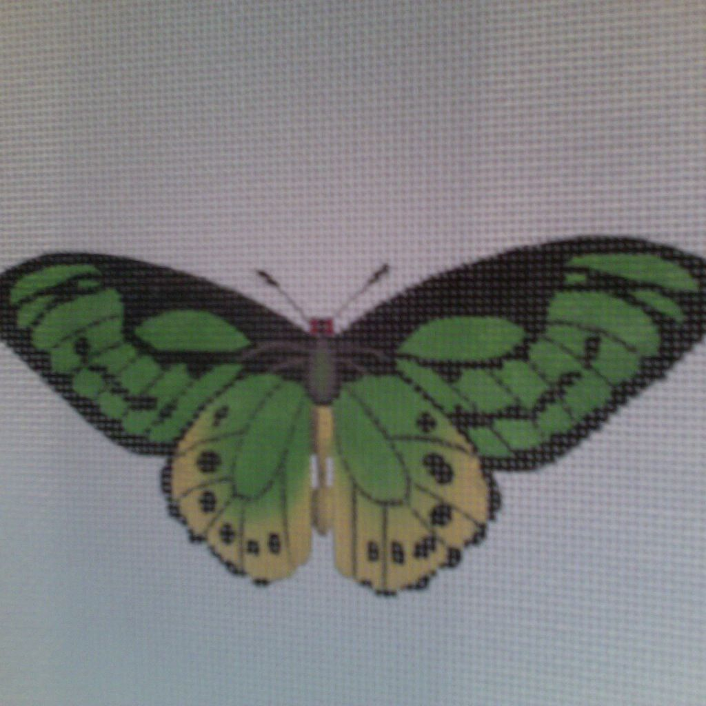 Canvas BUTTERFLY GREEN  1414B