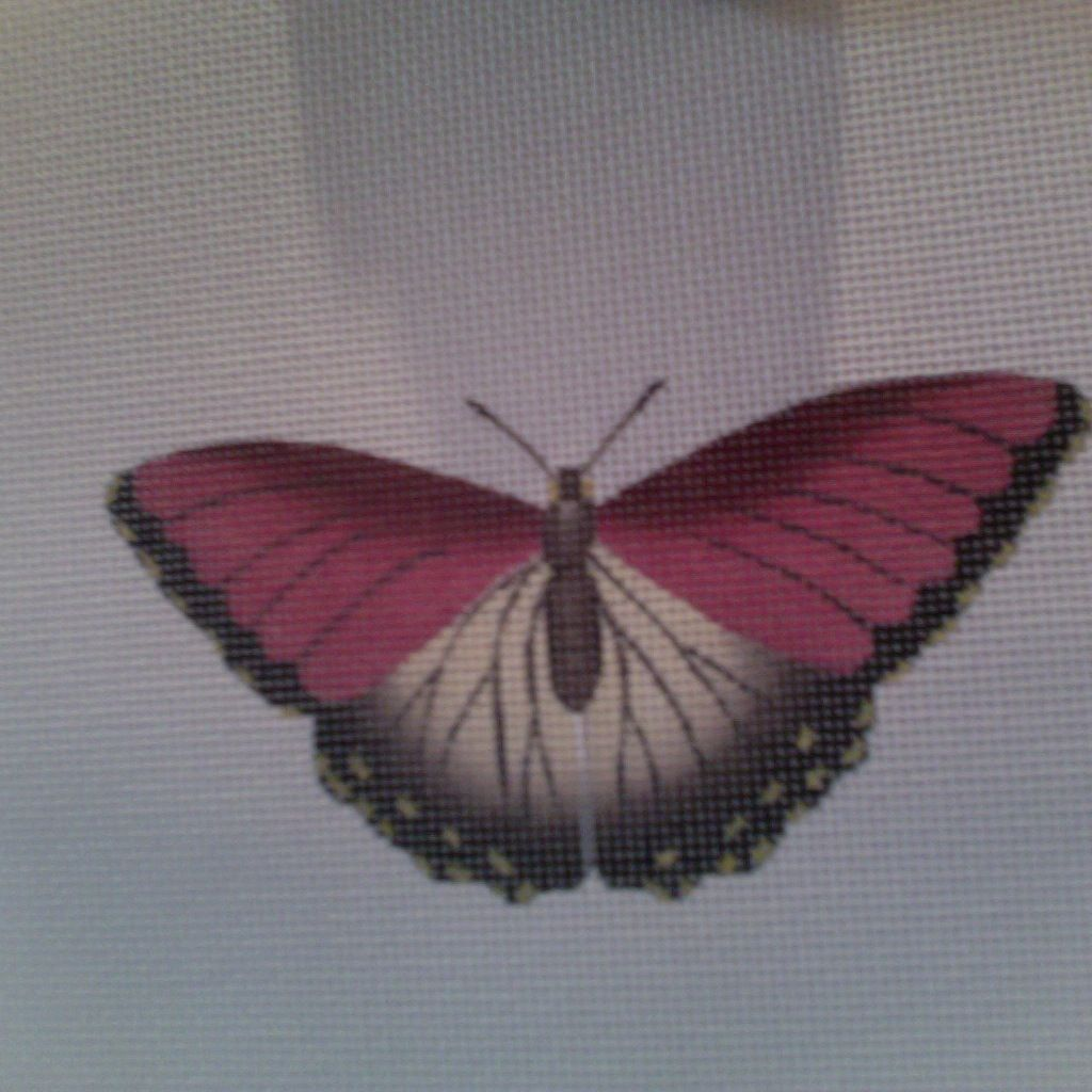 Canvas BUTTERFLY RED  1414D