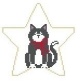 Canvas BLACK CAT STAR  ST100