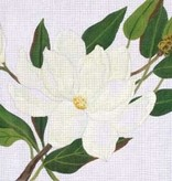 Canvas MAGNOLIA  137052