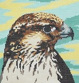 Canvas SALE  -  PEREGRINE FALCON  BR308   REG $62