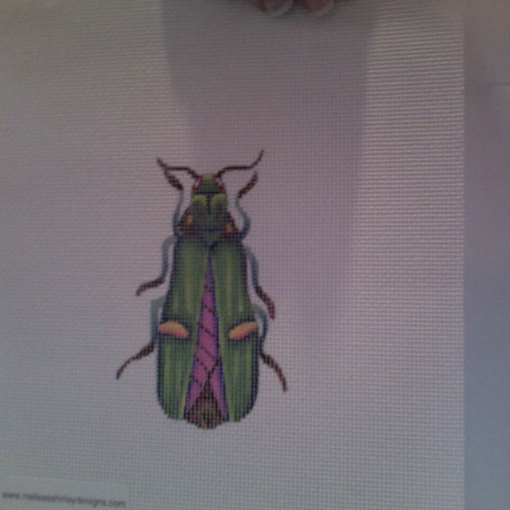 Canvas BEETLE  GREEN/PURPLE  1407F