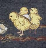 Canvas STUBBS CHICKS  BR158