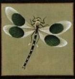 Canvas Black Dot Dragonfly  0904b<br />Melissa Shirley