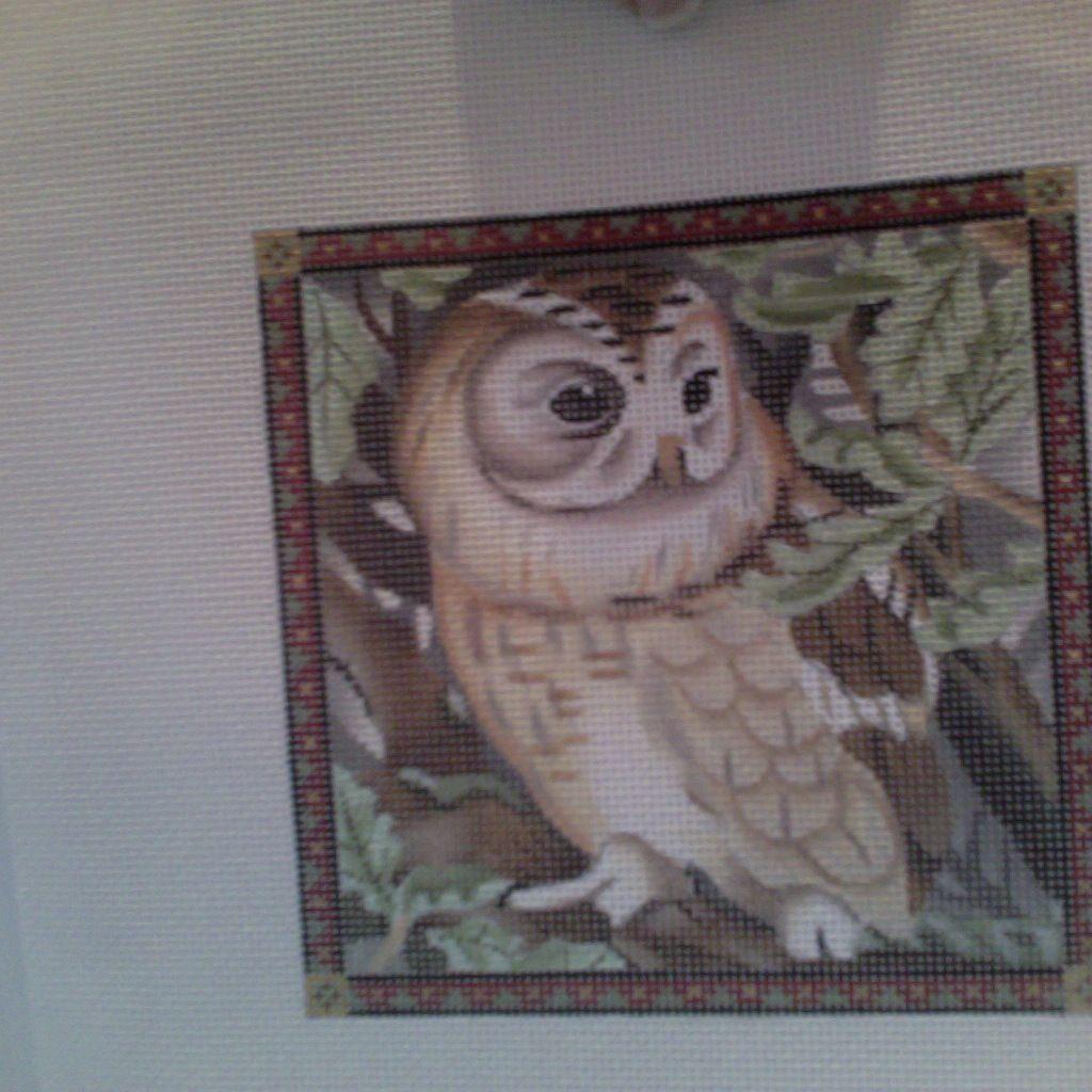 Canvas OWL 149NN
