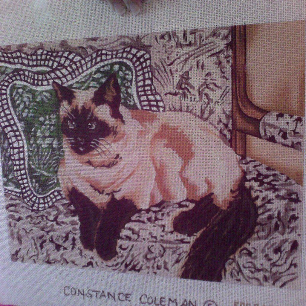 Canvas SIAMESE CAT  CC132