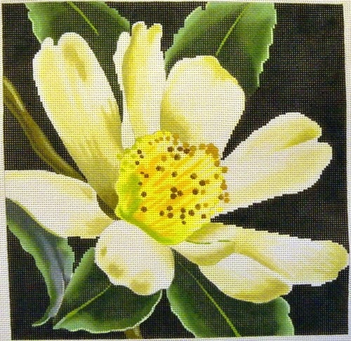 Canvas CAMELLIAS BLACK BACKGROUND  KH243