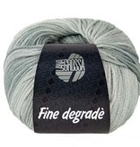 Yarn FINE DEGRADE - SALE<br /> REG 14.25