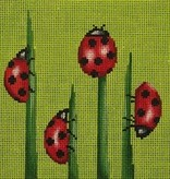 Canvas LADYBUGS  24016B