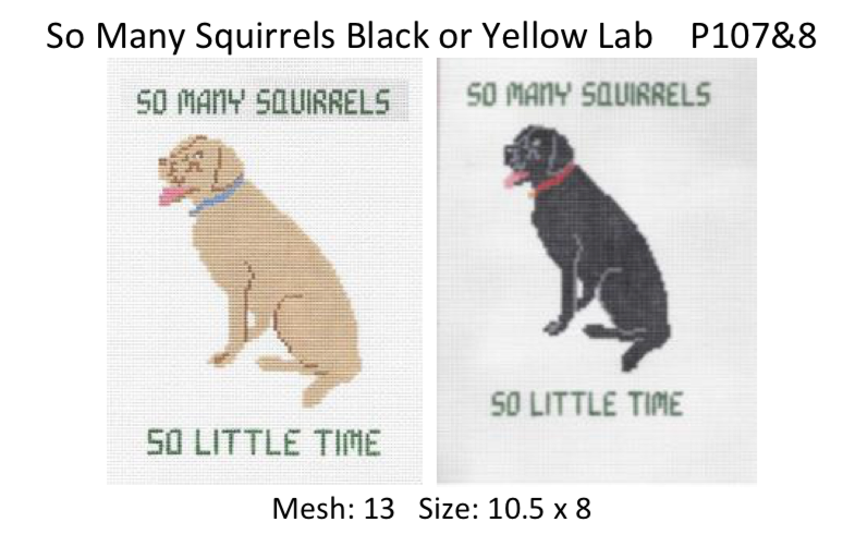 Canvas BLACK LAB…SO MANY SQUIRRELS  P107