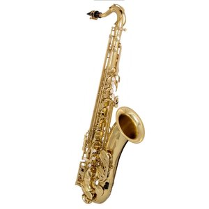 "BAC Musical Instruments BAC  ""Apprentice"" Tenor Saxophone"