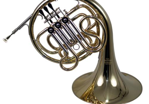 Single/Double/Triple Horns