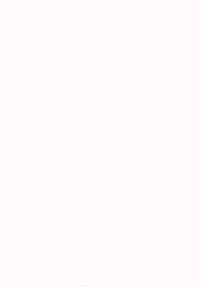 """Japan Awagami, Hakuho Select, Natural, 17"""" x 20.5"""", 220gsm"""