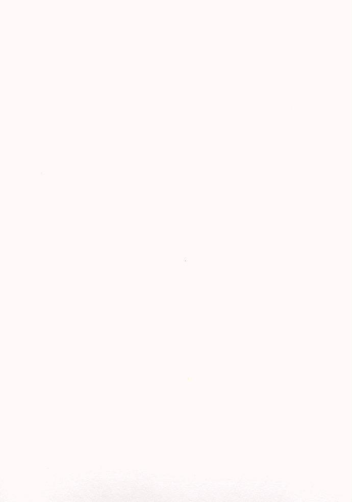 "Japan Awagami, Shiramine Select, Natural, 17"" x 20.5"", 110gsm"