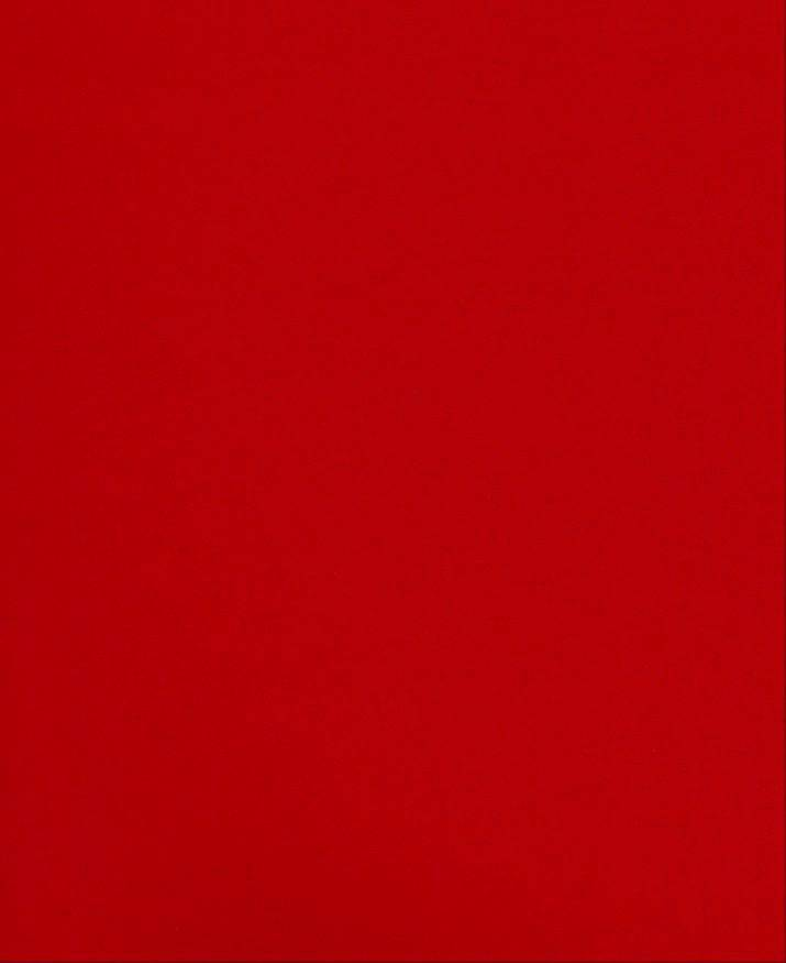 """Italy Fabriano, Vice Versa (Elle Erre), Cherry Red, 20"""" x 27.5"""", 220gsm / 135#"""