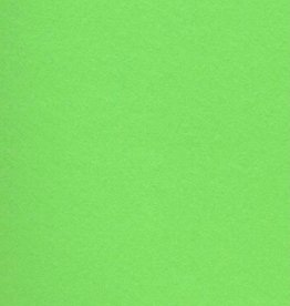 "Italy Fabriano, Vice Versa (Elle Erre), Pea Green, 20"" x 27.5"", 220gsm / 135#"