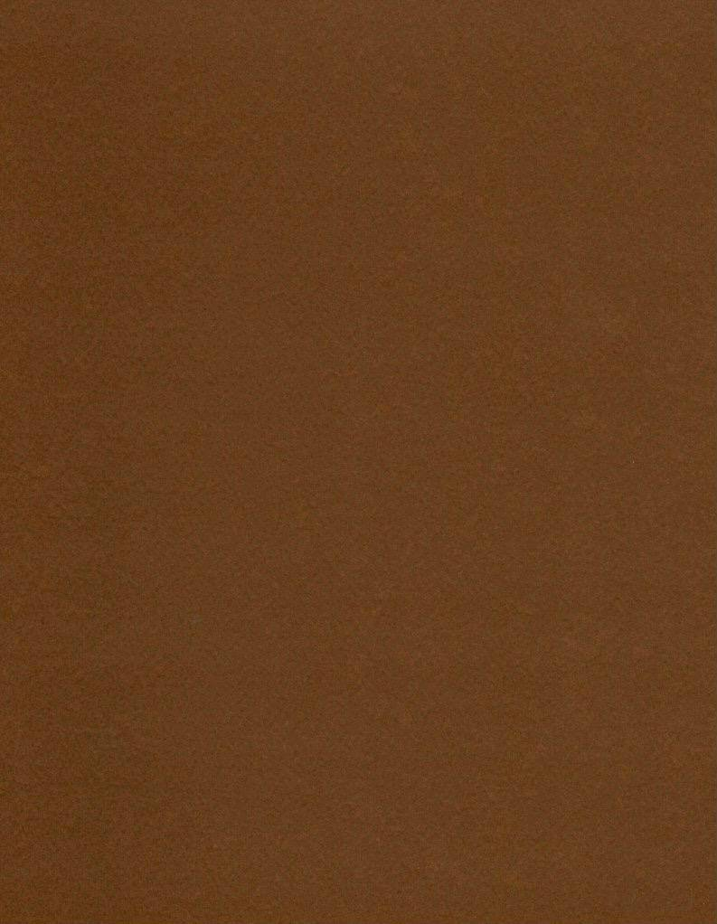 """Italy Fabriano, Vice Versa (Elle Erre), Brown, 20"""" x 27.5"""", 220gsm / 135#"""