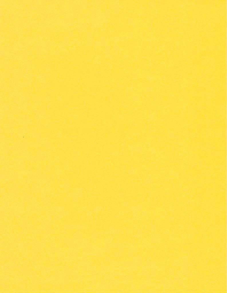 "Italy Fabriano, Vice Versa (Elle Erre), Lemon Yellow, 20"" x 27.5"", 220gsm / 135#"