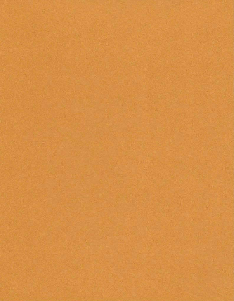 "Italy Fabriano, Vice Versa (Elle Erre), Light Brown, 20"" x 27.5"", 220gsm / 135#"