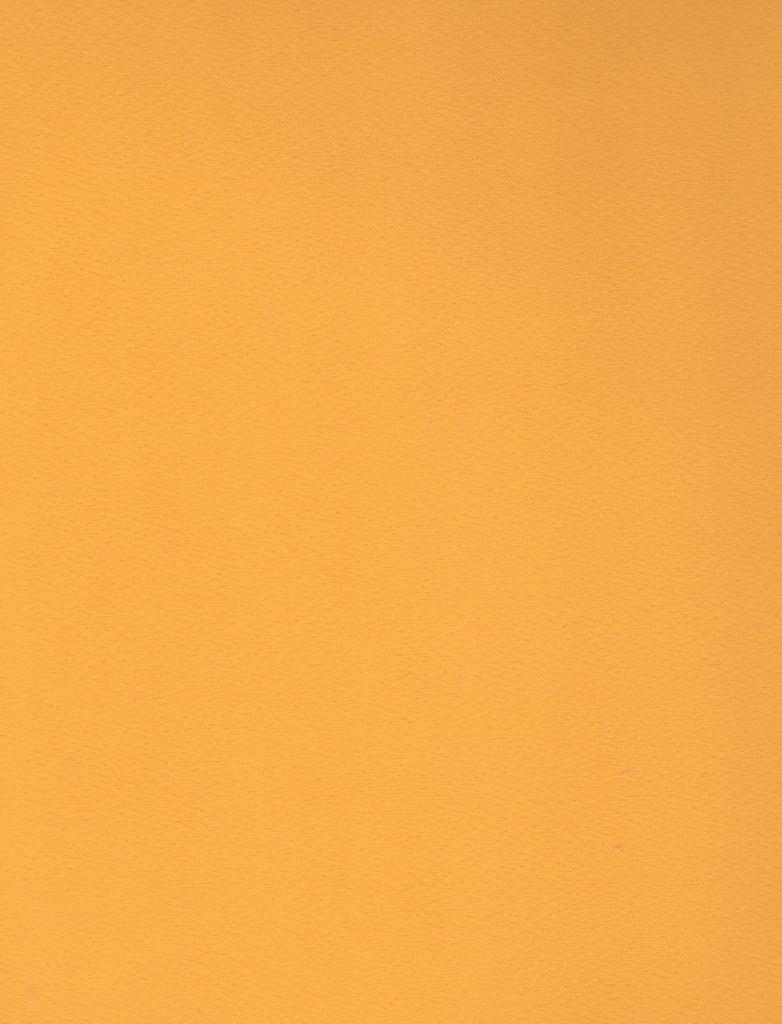 "Italy Fabriano Tiziano #44, Gold, 20"" x 26"" 160g"