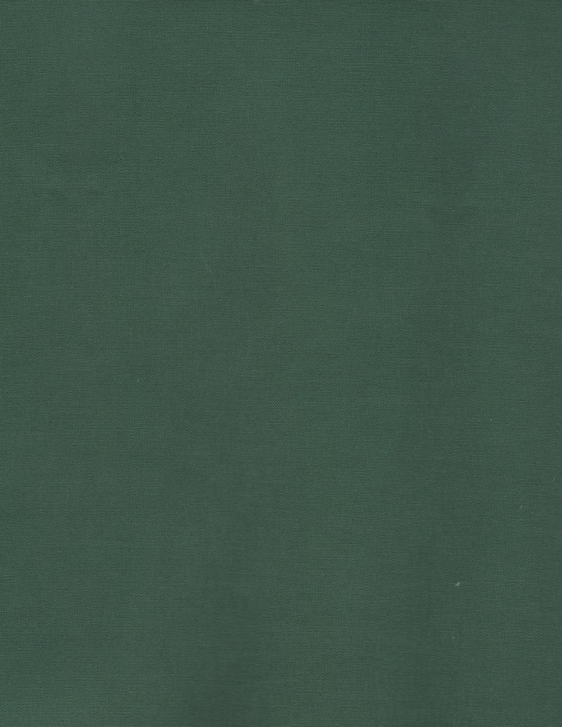 "Japan Book Cloth Green, 17"" x 26"", 2 sheets, Acid-Free, 100% Rayon, Paper Backed"