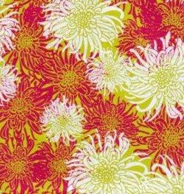 "India Laurelai Chrysanthemum on Lime, 20"" x 28"""