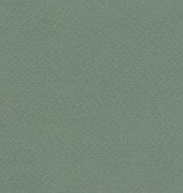 """Italy Fabriano Tiziano #13, Sage, 20"""" x 26"""" 160g"""