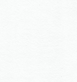 Domestic Evolon AP, 58 gsm, 22X30,<br />20 Sheet Pack