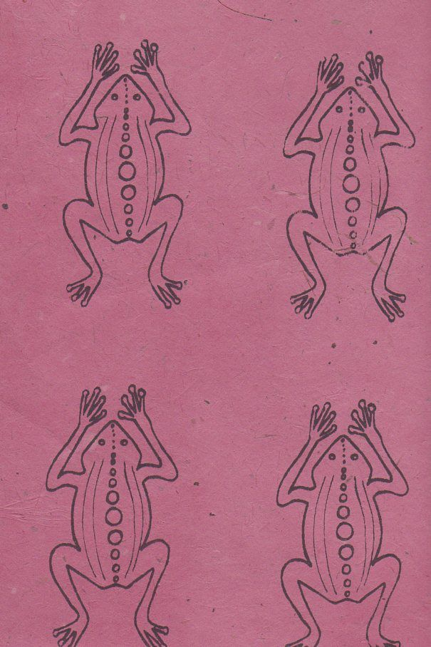 "Nepal Lokta Frogs on Rose, 20"" x 30"""
