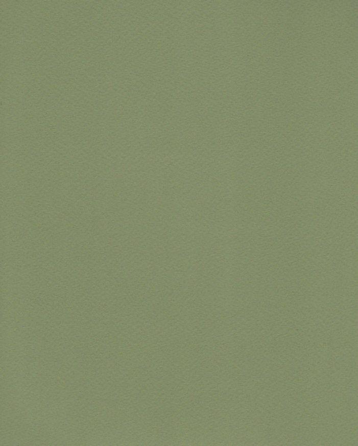 """Italy Fabriano Tiziano #14, Moss Green, 20"""" x 26"""" 160g"""