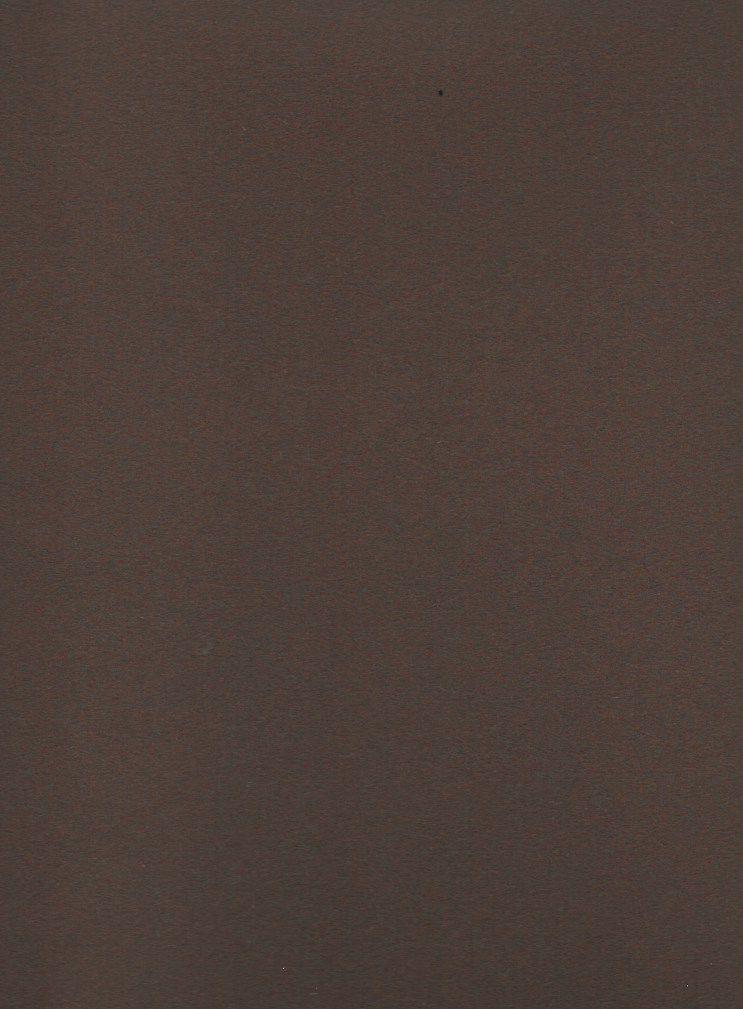 "Domestic Colorplan, 91#, Text, Bagdad Brown, 25"" x 38"", 135 gsm"