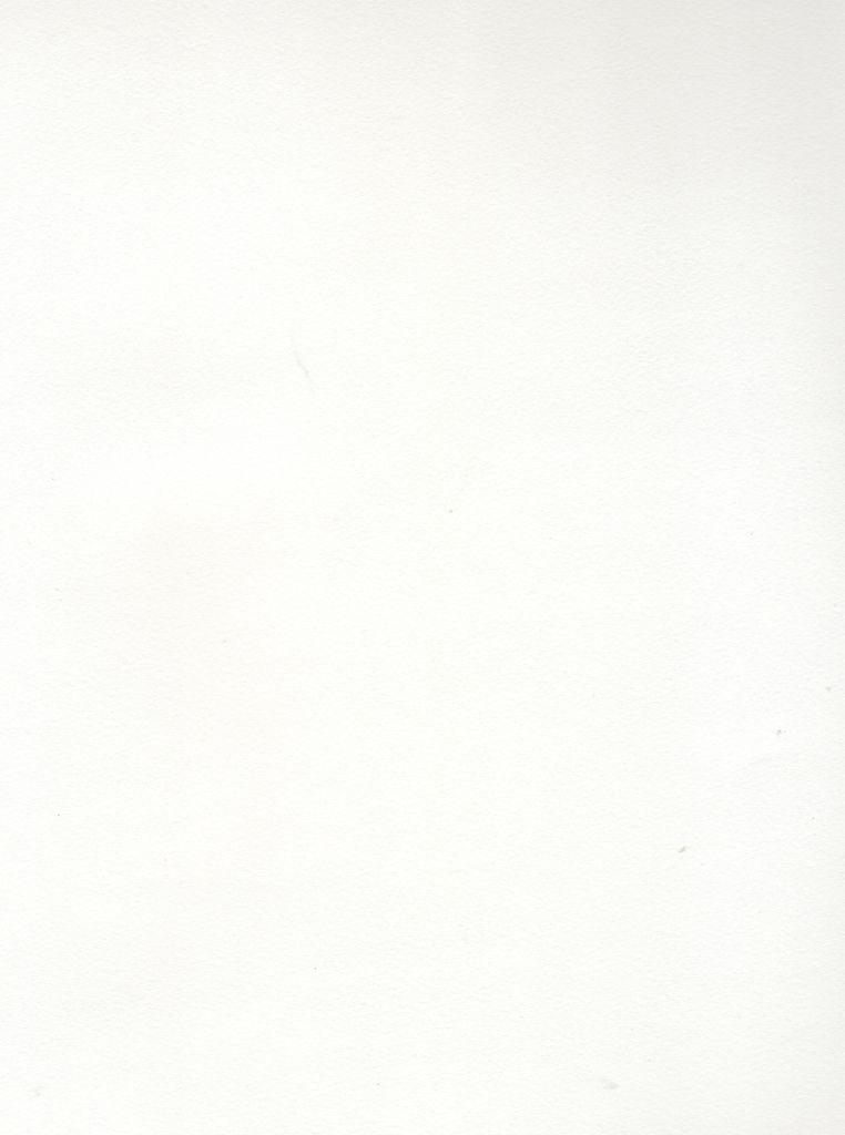 "Italy Revere Book Heavyweight Standard White, 26"" x 40"", 175 gr."