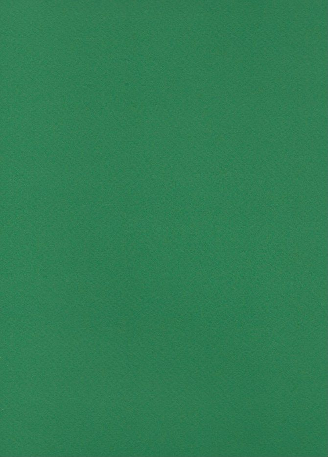 """Italy Fabriano Tiziano #37, Billiard Green, 20"""" x 26"""" 160g"""