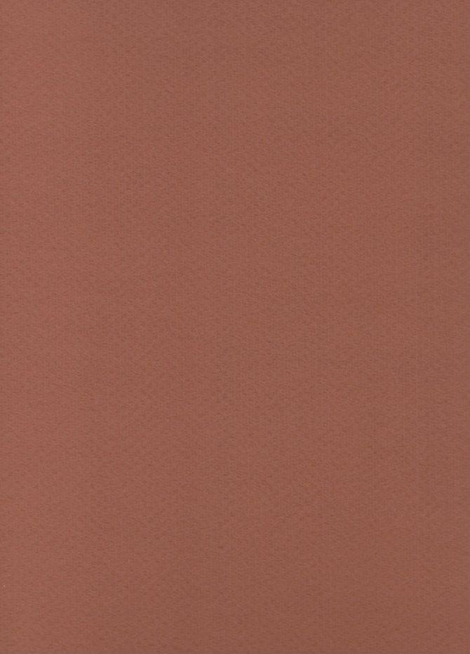"Italy Murillo #907, Chestnut, 27"" x 39"", 360 gr."