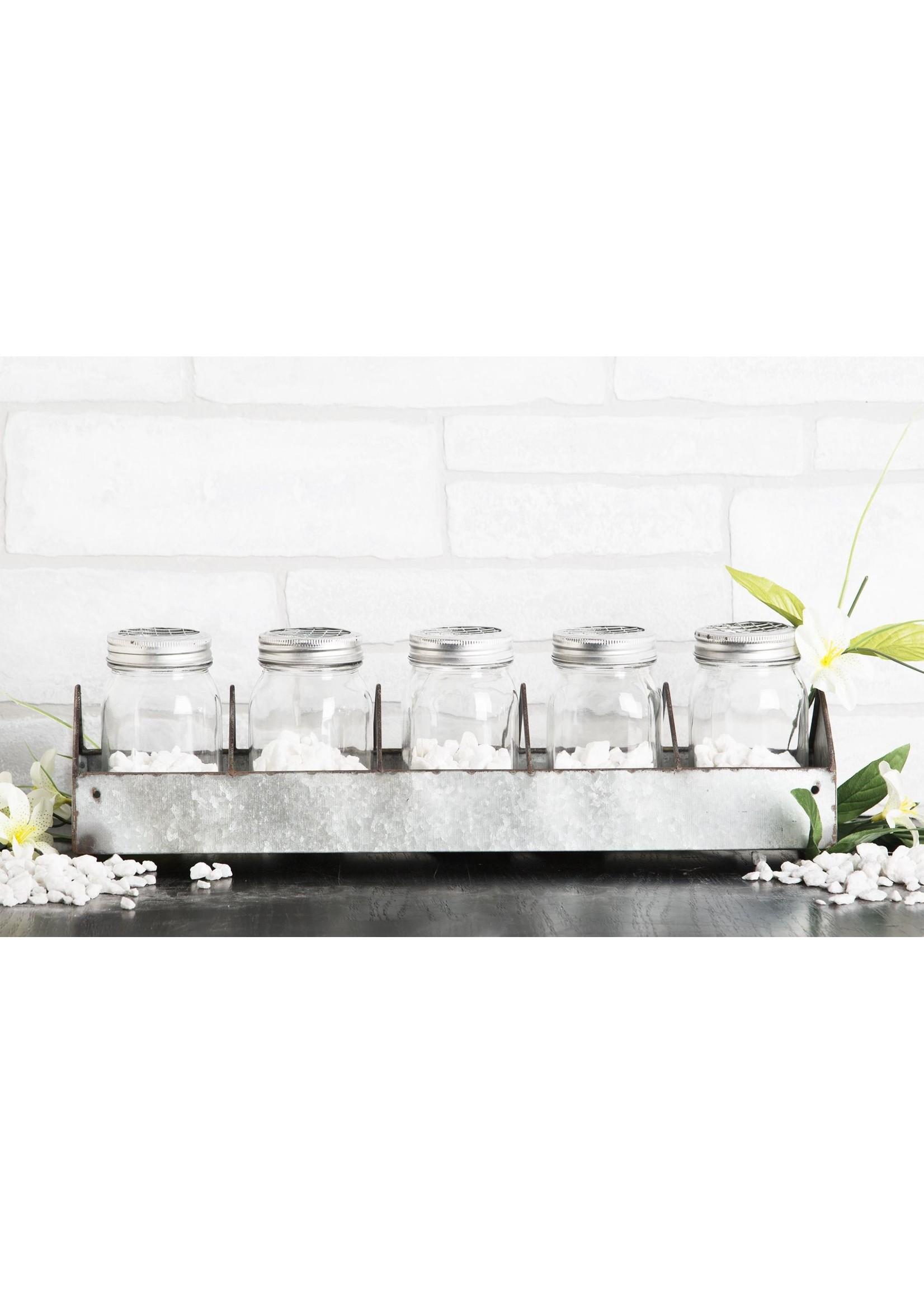 Home Essentials Mason Jar(5)  On Galvanized Tray