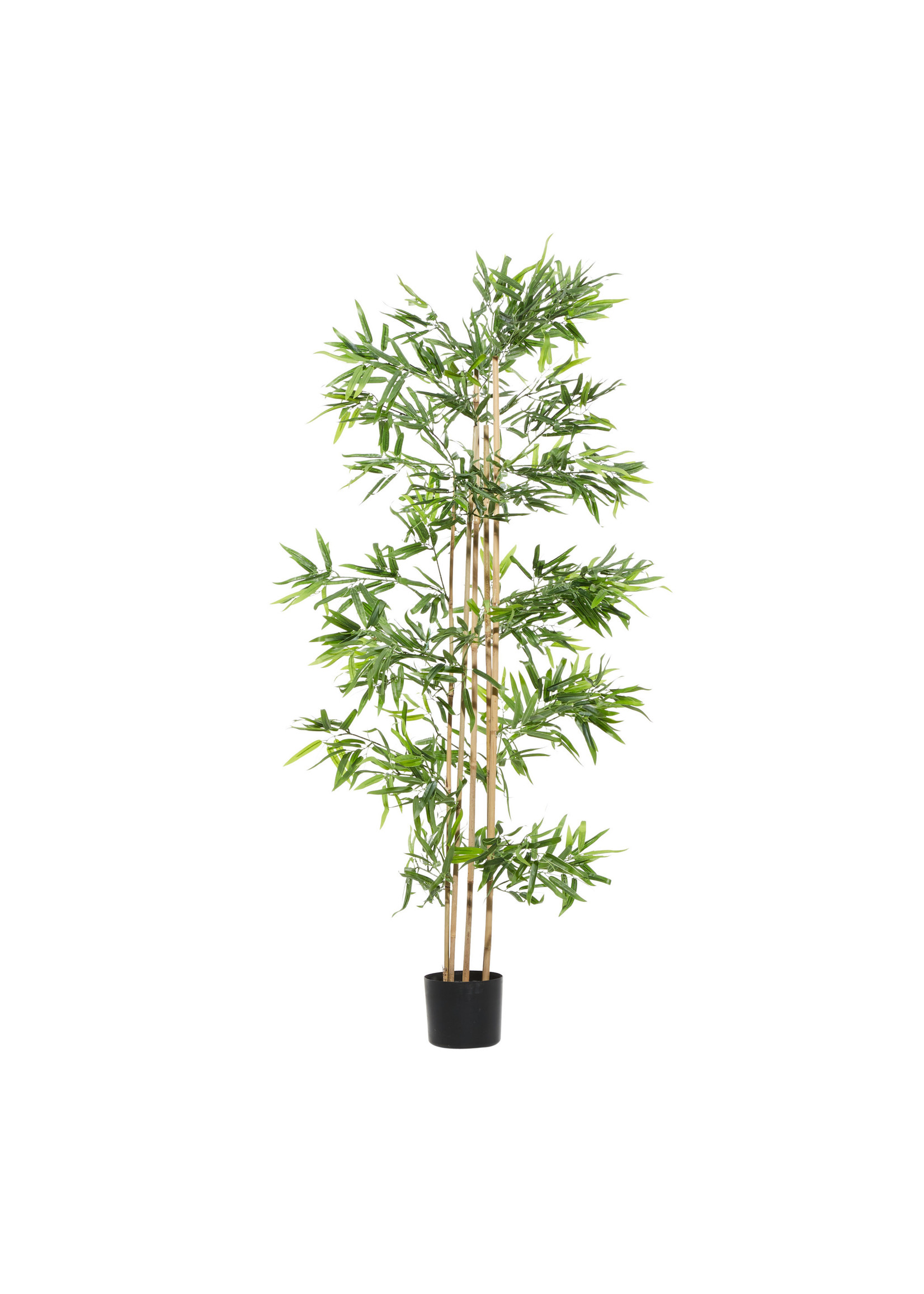 UMA Enterprises Artificial Bamboo Tree in Pot