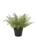 UMA Enterprises Artificial Foliage - Fern